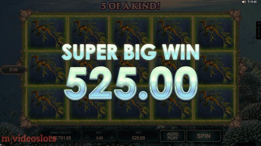 Ariana Microgaming Mobile Video Slot - Super Big Win!