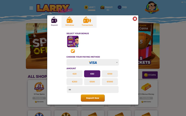 Larry Casino payment options and fees.