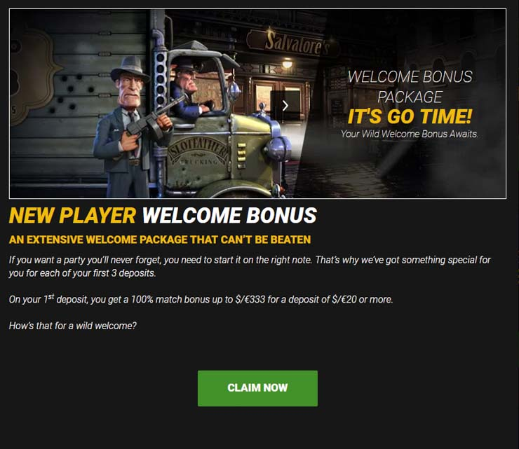GoWild Casino welcome bonus with match offer and free spins.