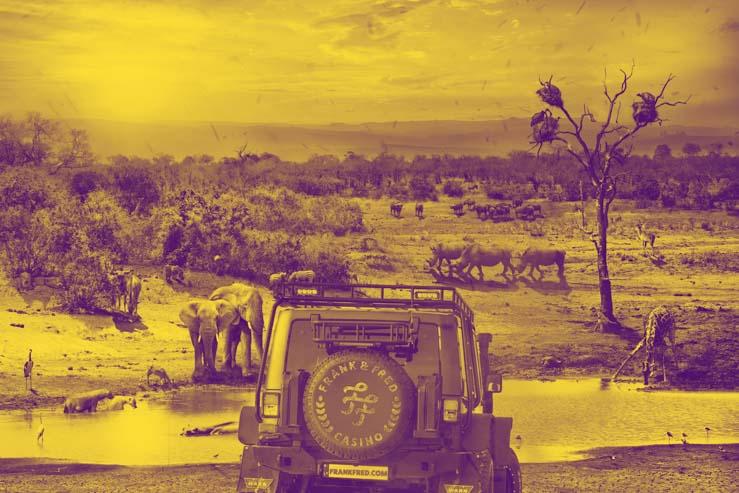 "Frank & Fred Casino ""Love The Animals Safari"" monthly raffle."